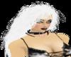 Snowwhite Witch Hazel