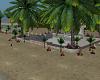Beach Room 2