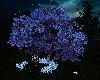 Love neon tree