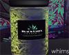 Buds Weed Jar