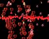 {LA} 6 particle love