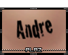 #P# Andre