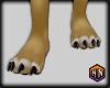 furry paws black nail