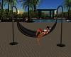 animated hammoc