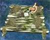 Old Log Raft