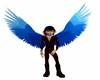 Blue Mountain Wings