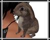 Bunny on Shoulder v1