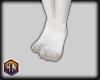 feet small furry bunny
