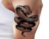 Cobra Tattoo (Left Arm)