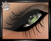 Hollywood Lashes~