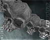 ¤ Skull Monochrome Belt