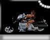 ~Kitty's Harley~