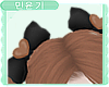 MY| Eevee Bows