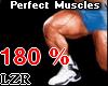 Muscles Legs *PT 180%