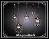 ~MG~ LD Ceiling Light
