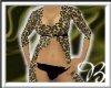 *00*Exotic Leopard