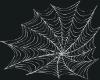 [LD] WEB