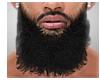 Philly Beard