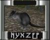 Dark Rat Animated