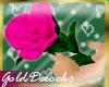 G-Little Pink Rose