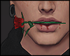 V' day rose