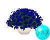 ~FDF~ Blue Flowers