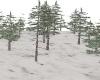 Dj Light Snow Tree
