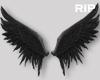 R. Black animated wings