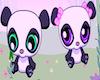 Pandas Room Nico´s