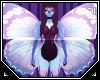 Tiv| Flutter *Wings*