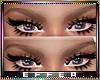 eyebrow flimsy 💎