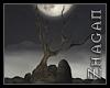 [Z] Ritual Hill