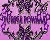 *B4* Purple Powaaa