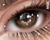 n| Cocoa Eyes Unisex
