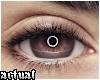 ✨ Ring Light Brown