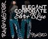 [S4]Corp Elegant  BluSlv