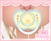 [Pup] Little Chick Paci