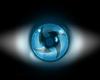 Lichergan Eye LEFT 2tone