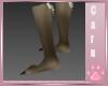 *C* Littlest Wolf Socks