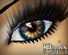 !R  Phenomenon HYBRID
