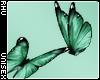 . Siren | Butterflies