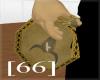[66]Native hand drum