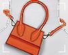 ṩWaist Bag Orange