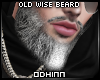 "ᛟ ""Old Wise Beard"""