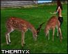 Animated Deers