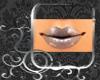 DD Storm Lips H3