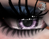Lilac Queen Eyes