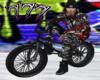 Stunt BMX M