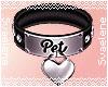 Pet Collar |Black