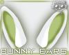 Ears White 2a Ⓚ